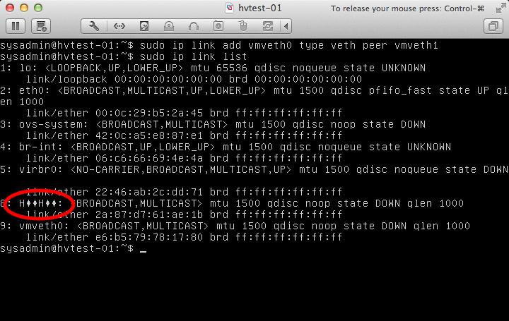 Weirdness with Virtual Ethernet Interfaces on Ubuntu - Scott's